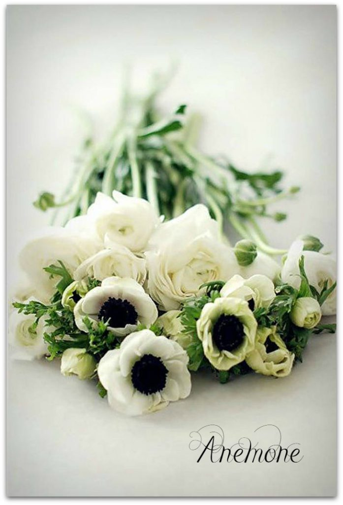 anemone wedding